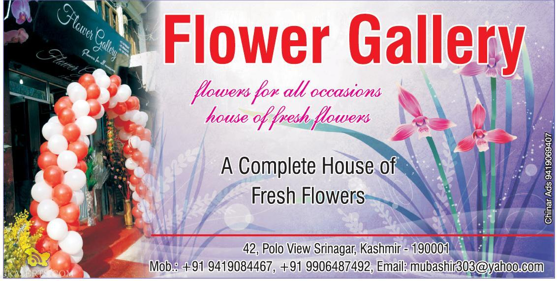 Flower Gallery A Complete House of Fresh Flowers