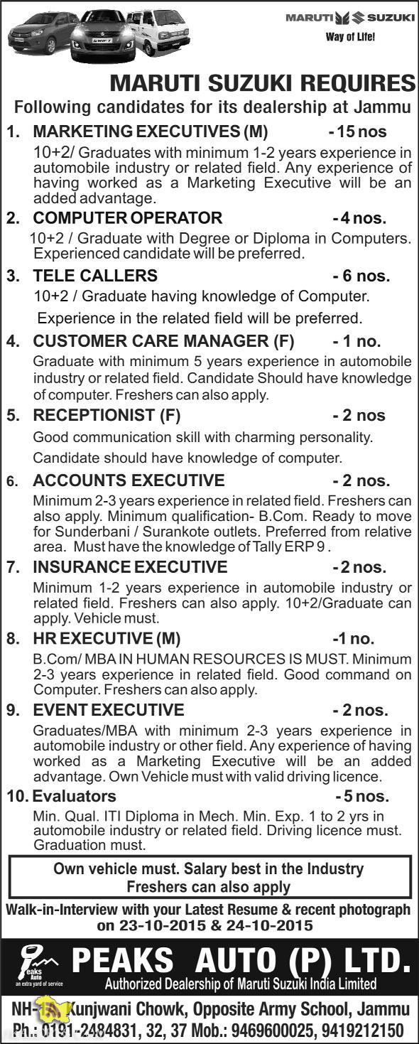 Jobs in MARUTI SUZUKI PEAKS AUTO (P) LTD.