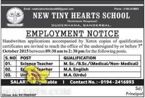 Teaching Jobs in NEW TINY HEARTS SCHOOL