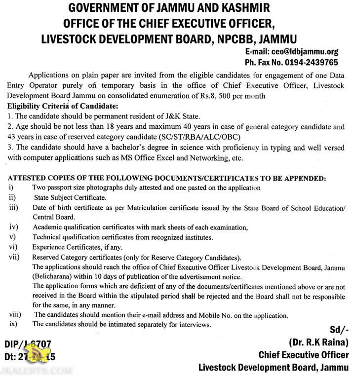 CHIEF EXECUTIVE OFFICER,