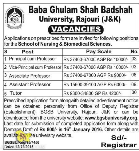Principal, Vice Principal , Professor Jobs in Baba Ghulam Shah Badshah University, Rajouri (J&K)