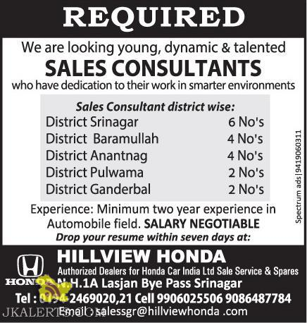 Sales Consultant jobs in HILLVIEW HONDA