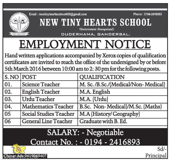 JOBS IN NEW TINY HEARTS SCHOOL