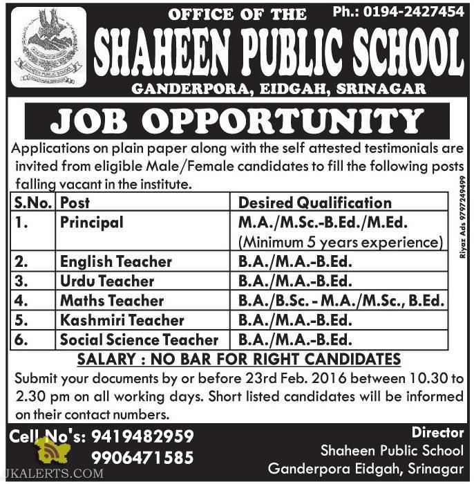 JOBS IN SHAHEEN PUBLIC SCHOOL