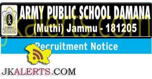 JOBS IN ARMY PUBLIC SCHOOL DAMANA MUTHI JAMMU, APS DAMANA