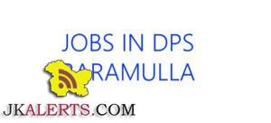 Jobs in Delhi Public School Delina, Baramulla
