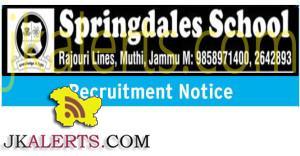 springdales public school jobs