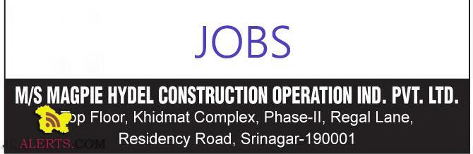 Jobs for Engineer's Tally operator in Srinagar