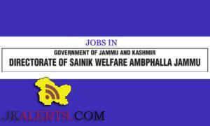 Senior Assistant Junior Assistant, Welfare Organizer, Peon-cum- Chowkidar.