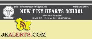 jobs-in-new-tiny-hearts-school