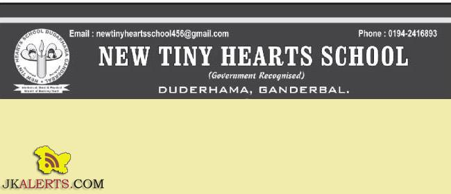 TEACHING JOBS IN NEW TINY HEARTS SCHOOL | Govt Private Jobs