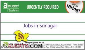Jobs in IT Company Almuqeet Systems srinagar