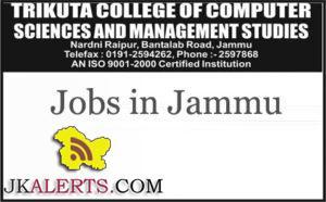 JOBS IN TRIKUTA COLLEGE OF COMPUTER SCIENCES AND MANAGEMENT STUDIES