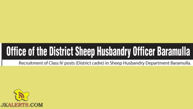 Recruitment of Class IV posts in Sheep Husbandry Department Baramulla