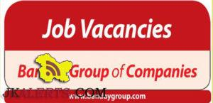 Jobs in Banday Group of Companies