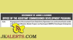 Accountant Cum Data Entry Operators jobs in assistant commissioner development Pulwama
