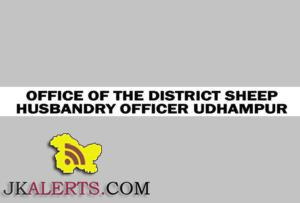 Class IV (Assistant Stockman) jobs in the Sheep Husbandry Department Udhampur