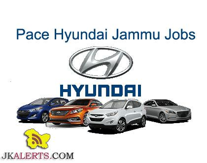 PACE HYUNDAI JAMMU JOBS ,Freshers can also Apply