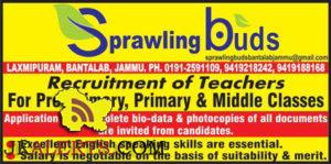 Sprawing buds Recruitment of Teachers For Pre-Primary, Primary & Middle Classes