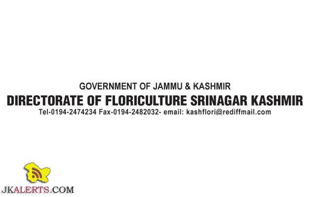 Recruitment Department of Floriculture