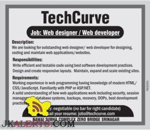 Web designer / Web developer jobs Techcurve