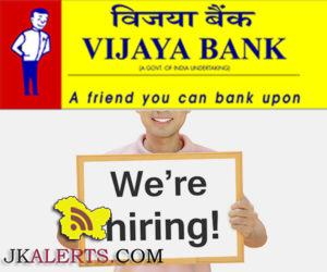 Vijaya Bank Recruitment 2017