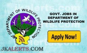 GOVT. JOBS IN DEPARTMENT OF WILDLIFE PROTECTION