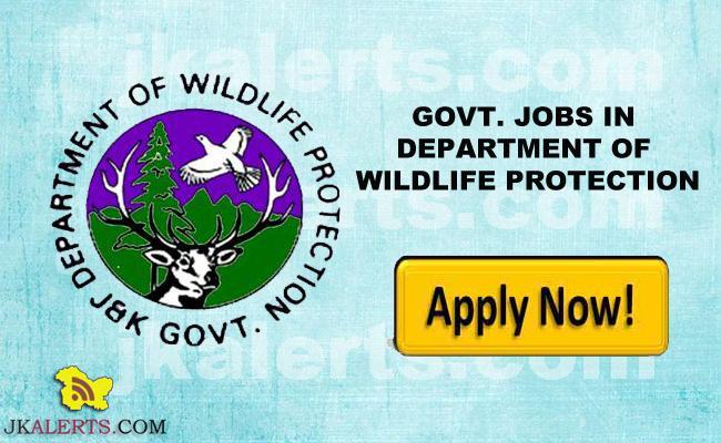 GOVT. JOBS IN DEPARTMENT OF WILDLIFE PROTECTION