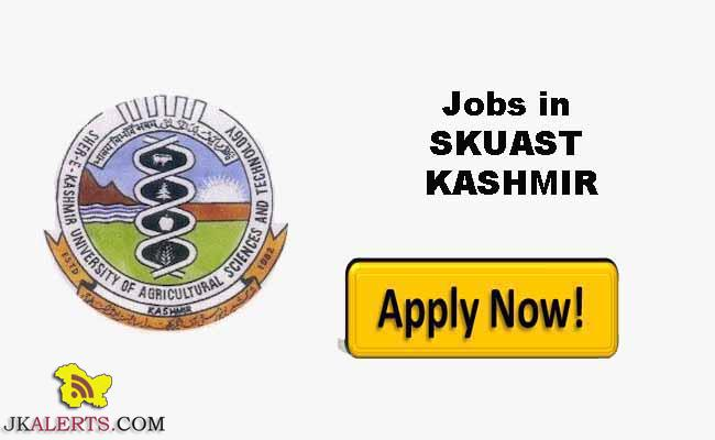 JOBS IN SKUAST KASHMIR