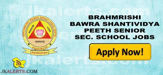 BRAHMRISHI BAWRA SHANTIVIDYA PEETH SENIOR SEC. SCHOOL JOBS