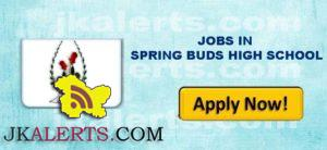 JOBS IN SPRING BUDS HIGH SCHOOL