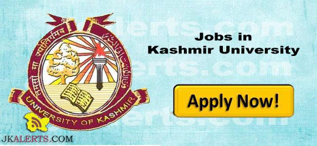 Jobs in University of Kashmir post Content Manager
