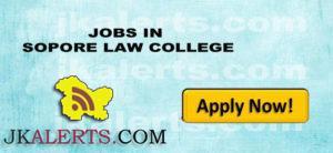 JOBS IN SOPORE LAW COLLEGE