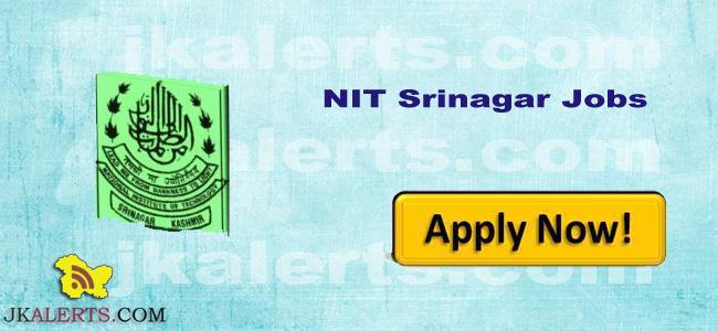 NIT Srinagar Jobs