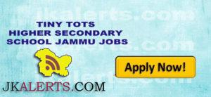 TINY TOTS HIGHER SECONDARY SCHOOL JAMMU JOBS