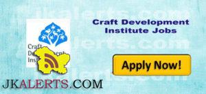 Craft Development Institute Srinagar Recruitment , Faculty / Consultants Jobs in CDI
