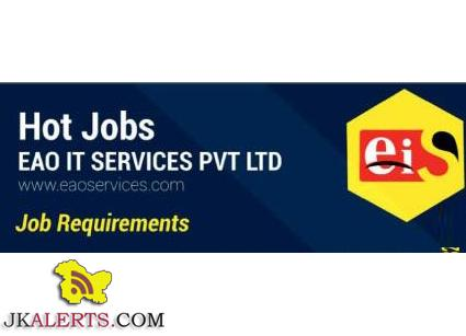 eao it services jobs