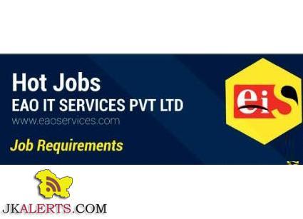 eao it services jobs
