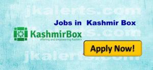 jobs in kashmir box