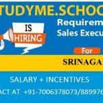 Studyme.School required Sale Executice for Srinagar city.