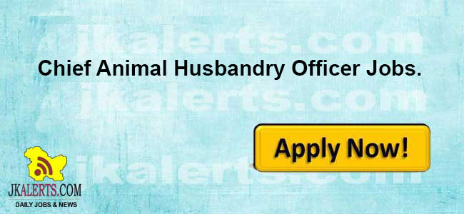 Chief Animal Husbandry Officer Bandipora jobs, Chief Animal Husbandry Officer Bandipora recruitment 2020,J&K Chief Animal Husbandry Officer, Bandipora jobs, Jobs in bandipora,