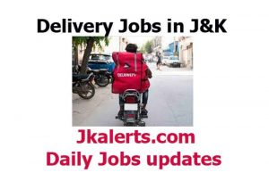 Field Executive Jobs in Delhivery Pvt Ltd Srinagar.