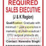 Sales Executive jobs in Hicks J&K.
