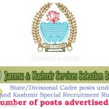 JKSSB State/Divisional Cadre posts under Jammu and Kashmir Special Recruitment Rules, 2015