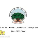 Central University Of Jammu Result for the post of Registrar and Librarian