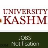 University of kashmir Project Fellow, Field Assistant Jobs