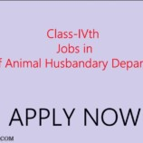 Provisional Select list for class IV posts in Animal Husbandry Department (District Cadre)