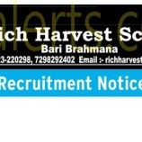 Rich Harvest School Jobs in Jammu