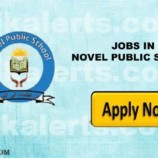 Jobs in Novel Public school