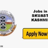 SKUAST Kashmir Apiarists and Technicians Jobs